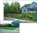 The bottom picture shows before a rain garden was created and the top picture shows how beneficial rain gardens can be for water filtration and for aesthetic purposes. [Click here to view full size picture]